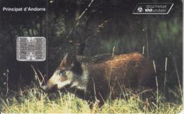 ANDORRA - Wild Boar, Tirage 10000, 10/96, Used - Zonder Classificatie