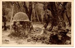 CPA - TAMARIS SUR MER - SOUS BOIS DE LA ROUVE - VIEUX PUITS DIT DE JACOB - MONA - S.E. 255 -- T. B. E. - - Tamaris