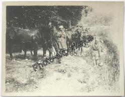 Photo Guerre 14-18 Militaire Cavalier Indien British Cavalry Indian WW1 - Guerre, Militaire