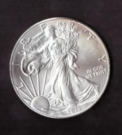UNITED STATES OF AMERICA - FINE SILVER - ONE DOLLAR - ANNO 2013 - LIBERTY - IN GOD WE TRUST - SILVER - ARGENTO - - Monete