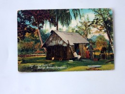 Carte Postale Ancienne : BELIZE , BRITISH HONDURAS: East Indian Coolie Hut, In 1908 - Belize