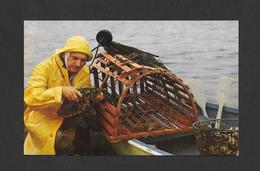 NOUVEAU BRUNSWICK - NEW BRUNSWICK - UN PÊCHEUR TYPIQUE DE HOMARDS À SON TRAVAIL - LOBSTER FISHERMAN - Nouveau-Brunswick