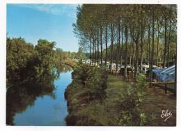 SAINT PALAIS--La Bidouze Et Le Camping Municipal ,cpsm 15 X 10  N°7821 éd Elcé--carte Toilée Pas Très Courante - Saint Palais