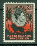 K.U.T.: 1938/54   KGVI    SG150a    £1   [Perf: 14]     MH - Kenya, Uganda & Tanganyika