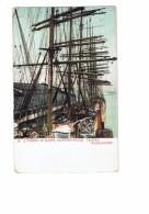Tacoma WA Washington - A Forest Of Masts - Shipping Scene - N°23 - Bateau Voilier Mats - Tacoma