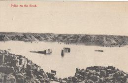 Philae On The Flood - Aswan
