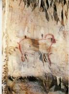 46 - GOURDON En QUERCY - Grottes Préhistoriques De COUGNAC - Le Grand Bouquetin - Gourdon