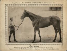 CHEVAUX - HIPPISME - Courses De Chevaux - Cheval De Course - Supplément à La France Chevaline 1908 - NORTHEAST - Animaux