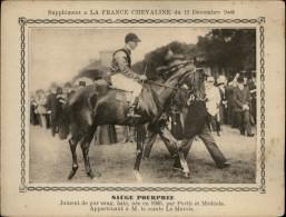 CHEVAUX - HIPPISME - Courses De Chevaux - Cheval De Course - Supplément à La France Chevaline 1908 - - Animaux