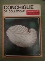 Conchiglie Da Collezione - Sergio Angeletti - I Documentari 17 - 1968 - Medicina, Biologia, Chimica