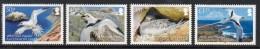 2009 Ascension White Tern Bird Complete Set Of 4  MNH - Ascension (Ile De L')
