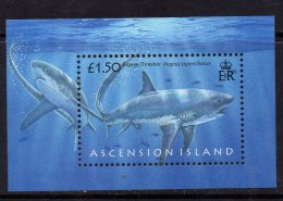 2008 Ascension Sharks Miniature Sheet Complete Set Of 1  MNH - Ascension (Ile De L')