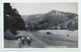 Dunster - The Deer Park - Blackmore - England