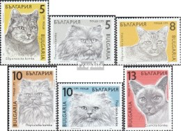 Bulgarie 3808-3813 (complète.Edition.) Neuf Avec Gomme Originale 1989 Chats - Bulgaria