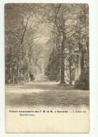 Gooreind  *  Colonie Missionnaire Des F.M. De M. , à Gooreind. - L'Allée Du Sacré-Coeur. - Wuustwezel