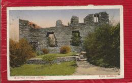 ALLEMAGNE - NEUSTADT AN DER HAARDT - Ruine Wolfsburg - CPA - 1925 - Neustadt (Weinstr.)