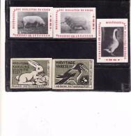 Hungary Boites D'allumettes-etiquettes, Match Labels Hungary 1956, Lievre Lapin Hare Porc Mouton Oie Goose Corneille - Boites D'allumettes - Etiquettes