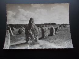 ALIGNEMENTS DE KERMARIO   CARNAC  Carte  Années 40 - Dolmen & Menhirs