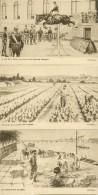 ANJOU   ILLUSTRATEUR   GEORGES  GRELLET    LOT DE 5 CARTES - Illustrateurs & Photographes