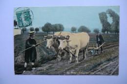 CPA 03 ALLIER VICHY. Labourage Aux Environs. 1910. - Vichy