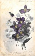 [DC3084] CPA - VIOLE MIOSOTIS - Viaggiata 1904 - Old Postcard - Fiori