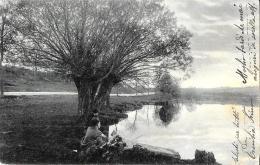 [DC3089] CPA - FIUME ALBERO PERSONE - ANIMATA - Viaggiata 1904 - Old Postcard - Botanik