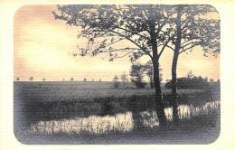 [DC3090] CPA - FIUME ALBERO - Viaggiata - Old Postcard - Botanik