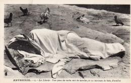 67Sm   Ethiopie Abyssinie Literie Matelas En Peau De Vache Et Oreiller De Bois En TBE - Ethiopia