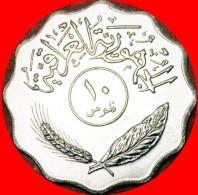 § GREAT BRITAIN: IRAQ ★ 10 FILS 1401-1981! LOW START ★ NO RESERVE! Type (1971-1981) - Iraq