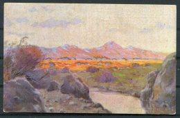 WW1 Germany South West Africa Deutsche Kolonialkriegerdank Patriotic Art Postcard - Patriotic