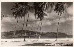 ACAPULCO (Mexico) - Palmen, Strand, Fotokarte Gel.195? - Mexiko