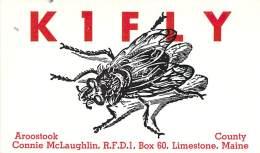 Amateur Radio QSL Card - K1FLY - Limestone, ME -USA- 1969 - 2 Scans - Radio Amateur