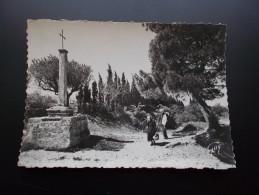 SAINT-REMY-DE-PROVENCE La Croix Des Vertus  Années 50 - Saint-Remy-de-Provence