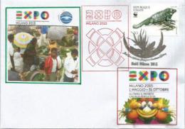 HAÏTI. Vue Du Marché Hyppolite Port Au Prince, EXPO UNIVERSELLE MILAN 2016,lettre Du Pavillon Haïti, Avec Timbre Haiti - Haiti