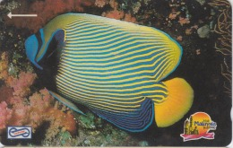 MALAYSIA Magnetic Uniphone $10 1992 Animal Sea Life Fish Used - Malaysia