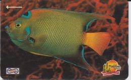 MALAYSIA Magnetic Uniphone $5 1992 Animal Sea Life Fish Used - Malaysia