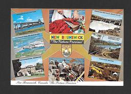 NEW BRUNSWICK - THE PICTURE PROVINCE - PAR UNIC - Nouveau-Brunswick