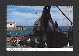NEW BRUNSWICK - FISHING A MAJOR INDUSTRY IN NEW BRUNSWICK - LA PÊCHE UNE INDUSTRIE MAJEUR DU NOUVEAU BRUNSWICK - Nouveau-Brunswick