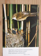 AK1057  Vogel Füttert Junge Im Nest - Groh - Spruch: Von Martin Luther - Col. - Ungelaufen - Topp Erhalten - Vögel