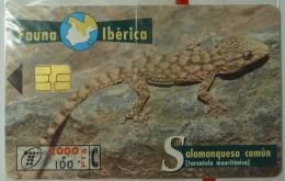 SPAIN - Chip - 2000 Units - Fauna Iberica III - Salamanquesa Comun - 12.98 - B-077 - Mint Blister - España