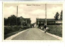 17559   -   Lot De 3 Cartes  -  Momalle  -  Rue Henroux, Béguines, Et Lamine - Remicourt