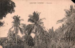 RARE  GRANDE COMORE COCOTIERS CIRCULEE 1946 - Comoros