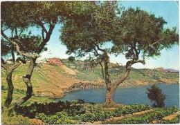 R1644 Isola Di Procida (Napoli) - Panorama Da Solchiaro / Viaggiata 1961 - Italia