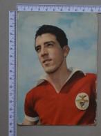 PORTUGAL    - JOSE AUGUSTO  - S L BENFICA    - (Nº15412) - Lisboa