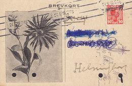 Denmark CARL V. LANGE, FREDERIKSSUND 1919 Card Karte HELSINGBORG Sweden 10 Ø Christian X. Flower Cachet (2 Scans) - Covers & Documents