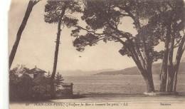.50. JUAN-LES-PINS . VUE SUR LA MER A TRAVERS LES PINS . TIMBRES DECOLLES AU VERSO . 1923 . 2 SCANES - Antibes