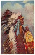 Indien Gaufrée Tuck Chef Stranger Horse Indian Chief - Indiens De L'Amerique Du Nord
