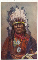 Indien Gaufrée Tuck Chef Iron Owl Indian Chief Medals Of Buchanan And Garfield - Indiens De L'Amerique Du Nord