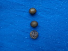 Lot De 3 Boutons  (2 ...tw Et W-le 3eme Couronne A Identifier ??) - Buttons