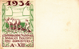 TESSERA-C.N.S.F.A.1934-CONFEDER. NAZ.SINDACATI FASCISTI DELL'AGRICOLTURA-A.XII-SEZ DI PATERNO'-OTTIMA CONSERVAZIONE-2 SC - Pubblicitari